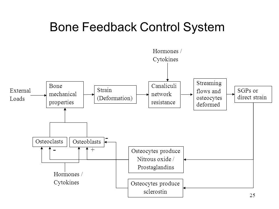 Bone Feedback Control System