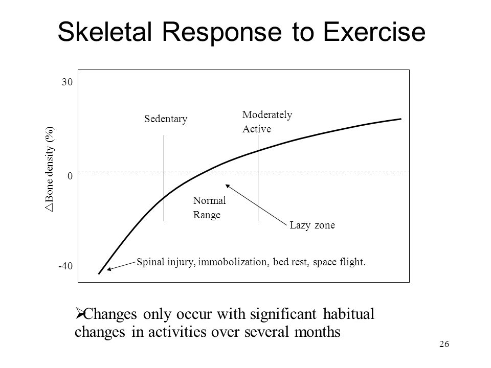Skeletal Response to Exercise