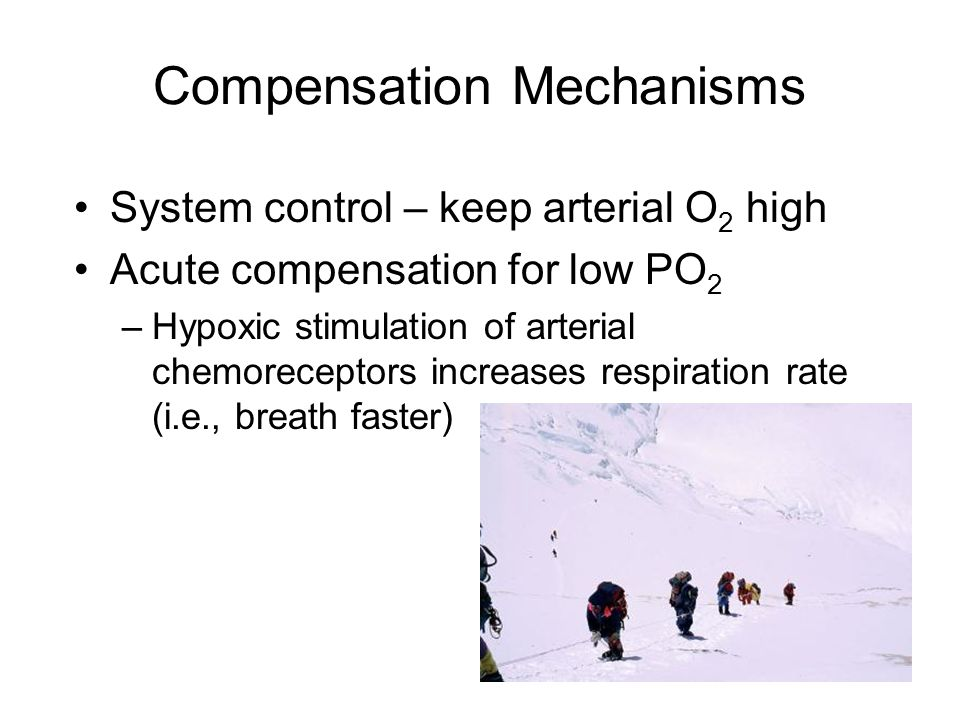 Compensation Mechanisms