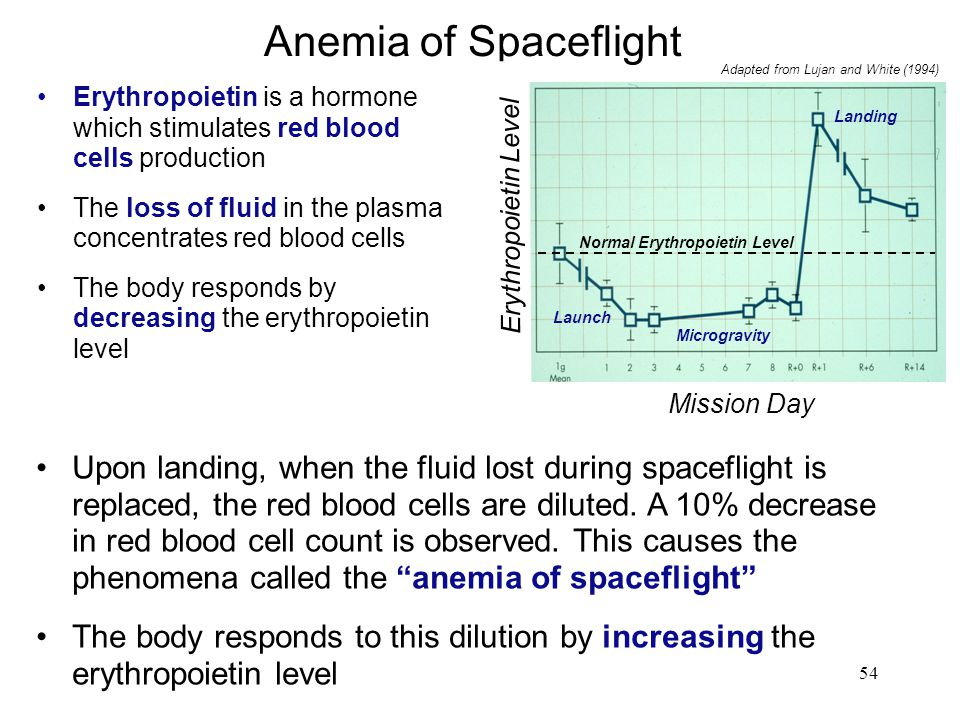 Anemia of Spaceflight Normal Erythropoietin Level. Erythropoietin Level. Landing. Launch. Microgravity.
