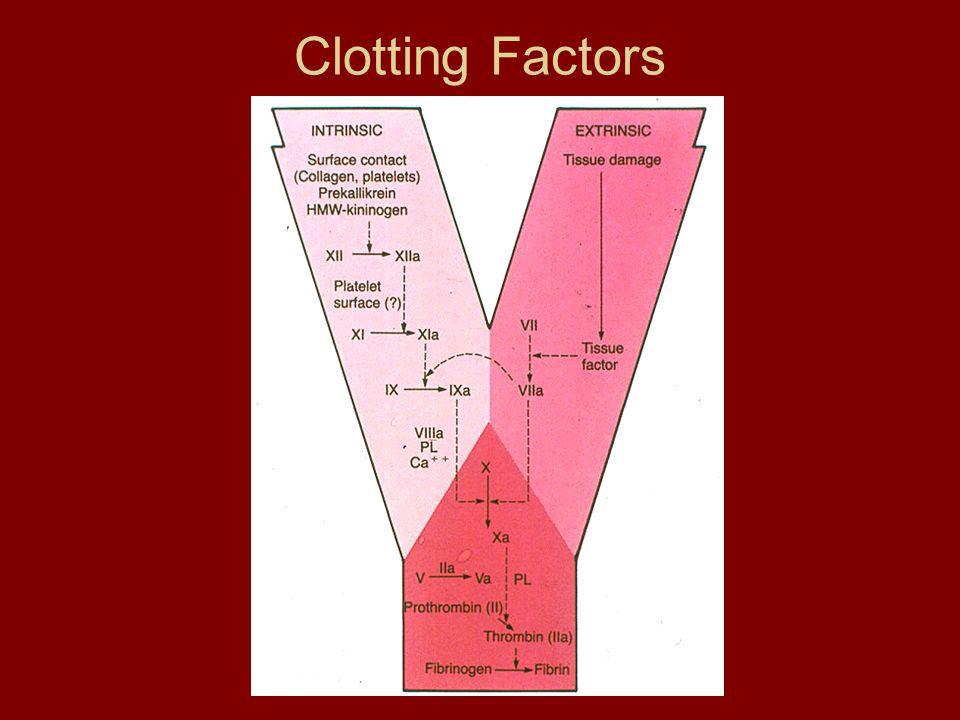 Clotting Factors