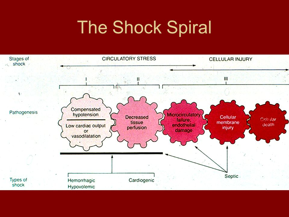 The Shock Spiral