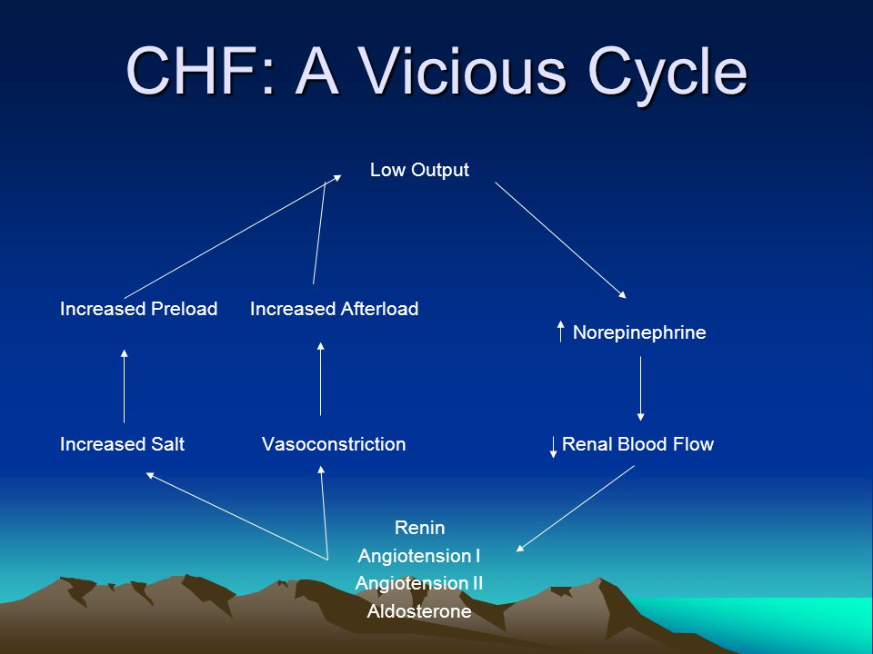 CHF: A Vicious Cycle Low Output