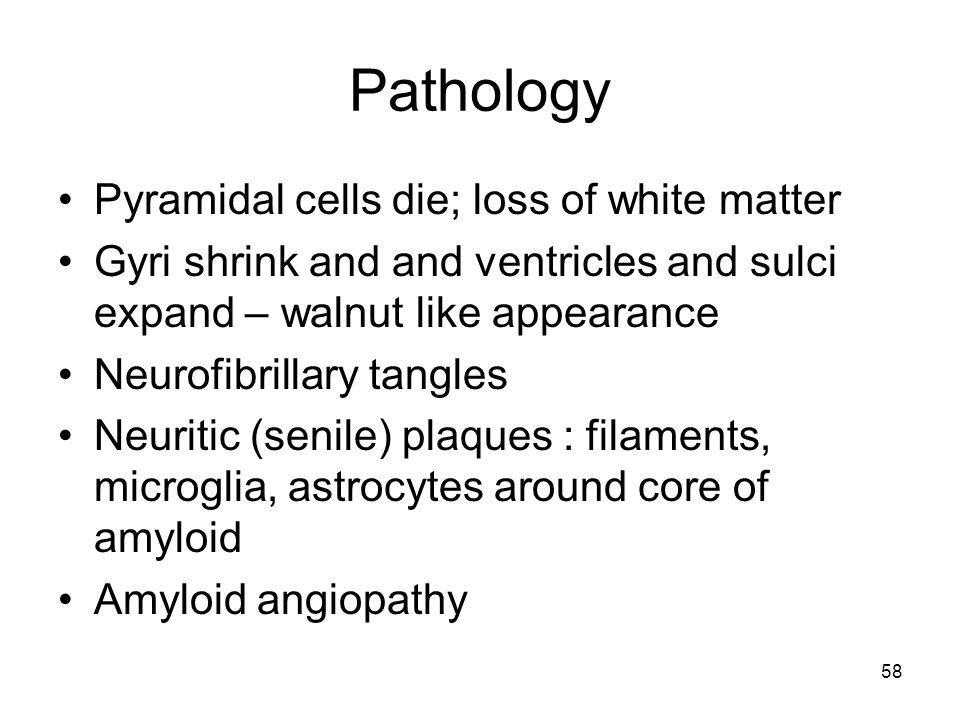 Pathology Pyramidal cells die; loss of white matter