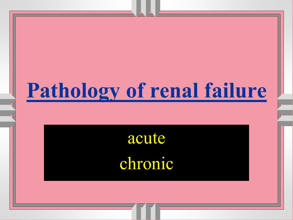 Pathology of renal failure
