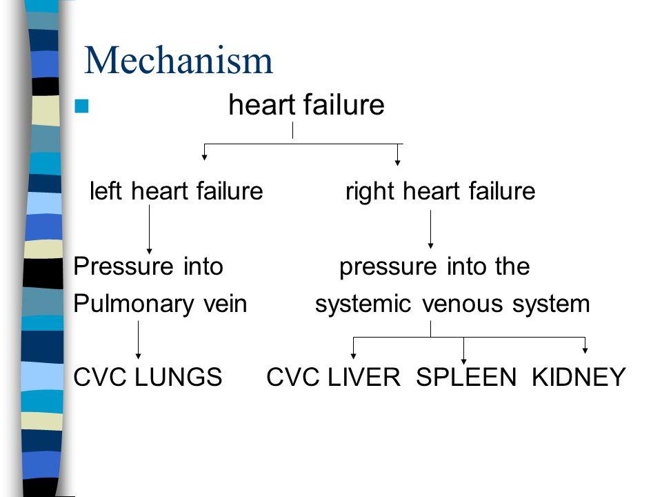 Mechanism heart failure left heart failure right heart failure