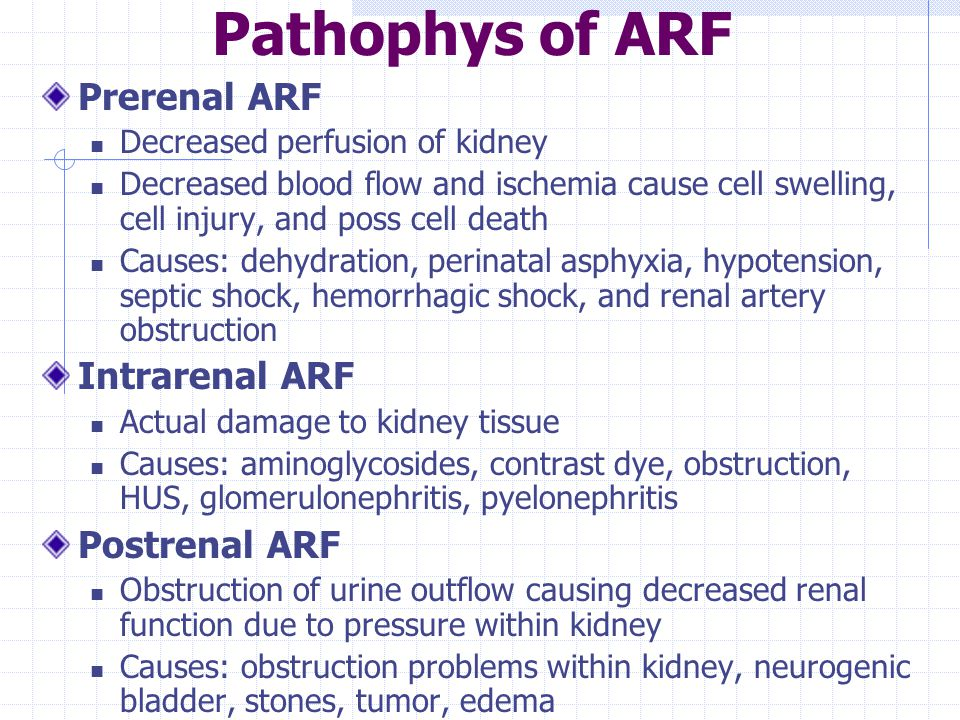 Pathophys of ARF Prerenal ARF Intrarenal ARF Postrenal ARF