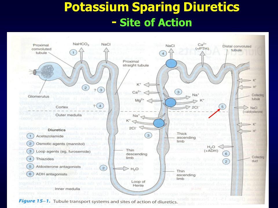 Potassium Sparing Diuretics - Site of Action