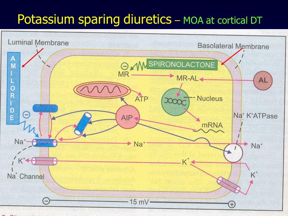 Potassium sparing diuretics – MOA at cortical DT