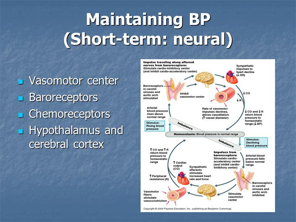 Maintaining BP (Short-term: neural)