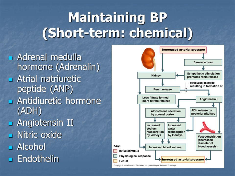 Maintaining BP (Short-term: chemical)
