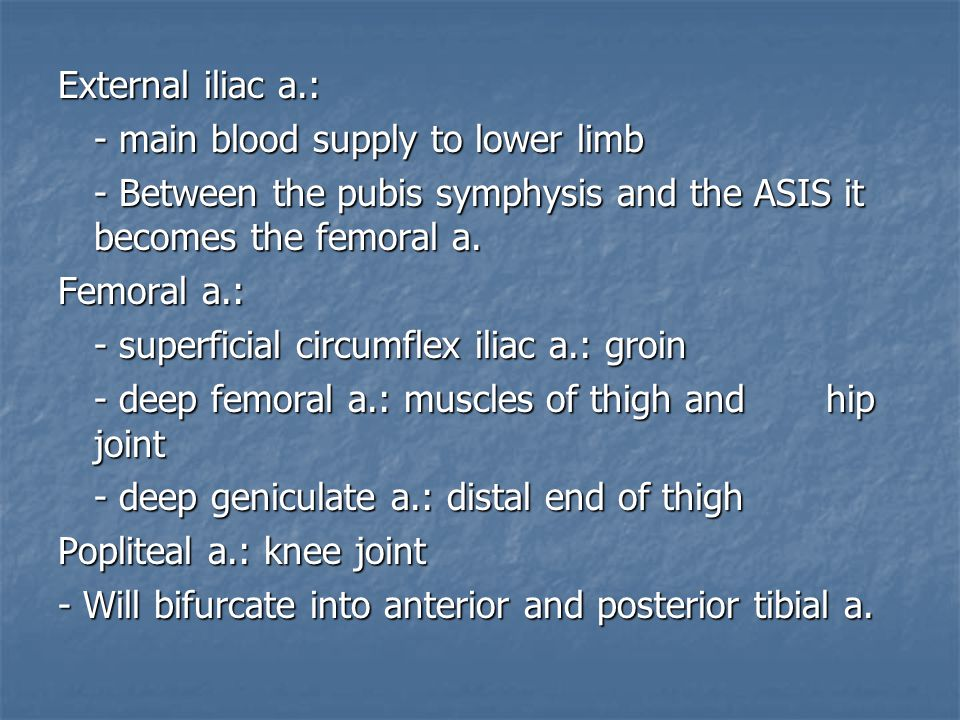 External iliac a.: - main blood supply to lower limb. - Between the pubis symphysis and the ASIS it becomes the femoral a.