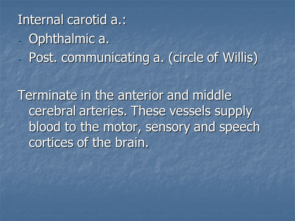Internal carotid a.: Ophthalmic a. Post. communicating a. (circle of Willis)