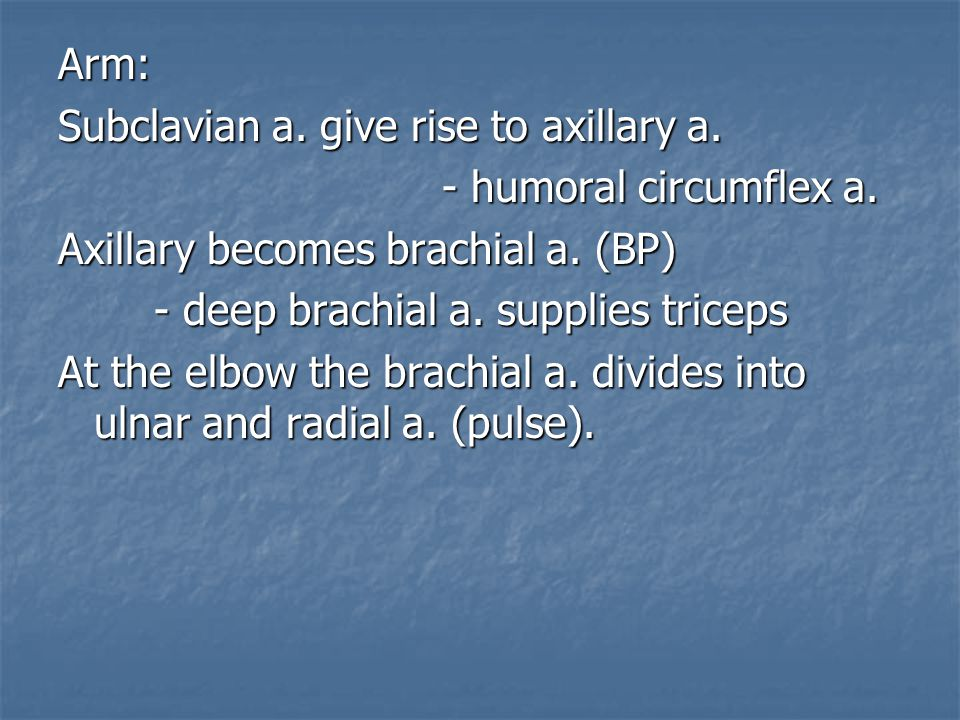 Arm: Subclavian a. give rise to axillary a. - humoral circumflex a. Axillary becomes brachial a. (BP)