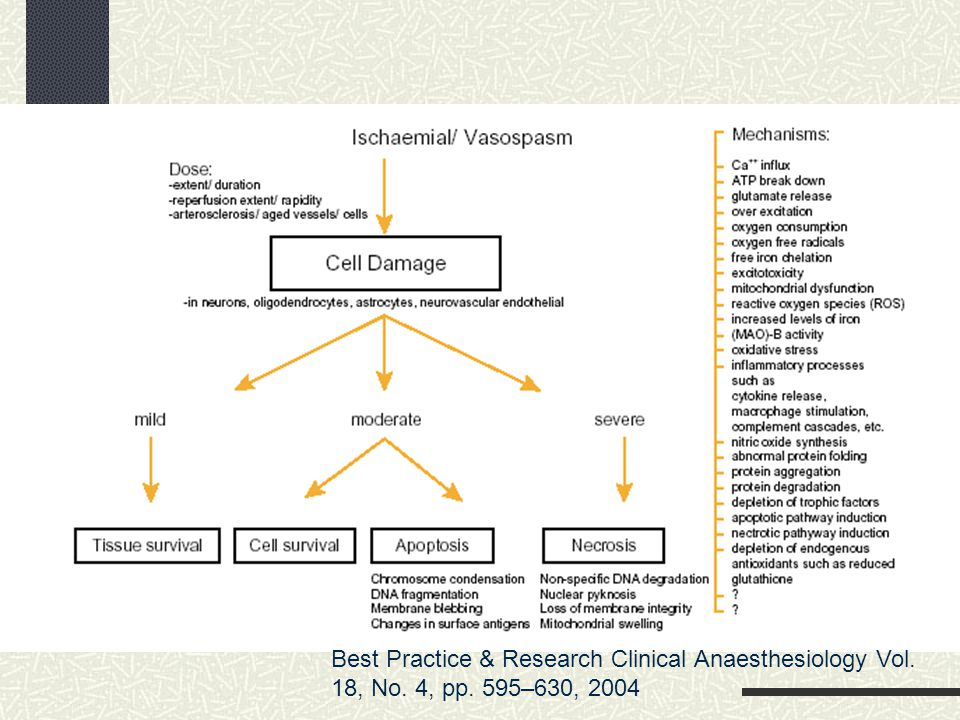 Best Practice & Research Clinical Anaesthesiology Vol. 18, No. 4, pp