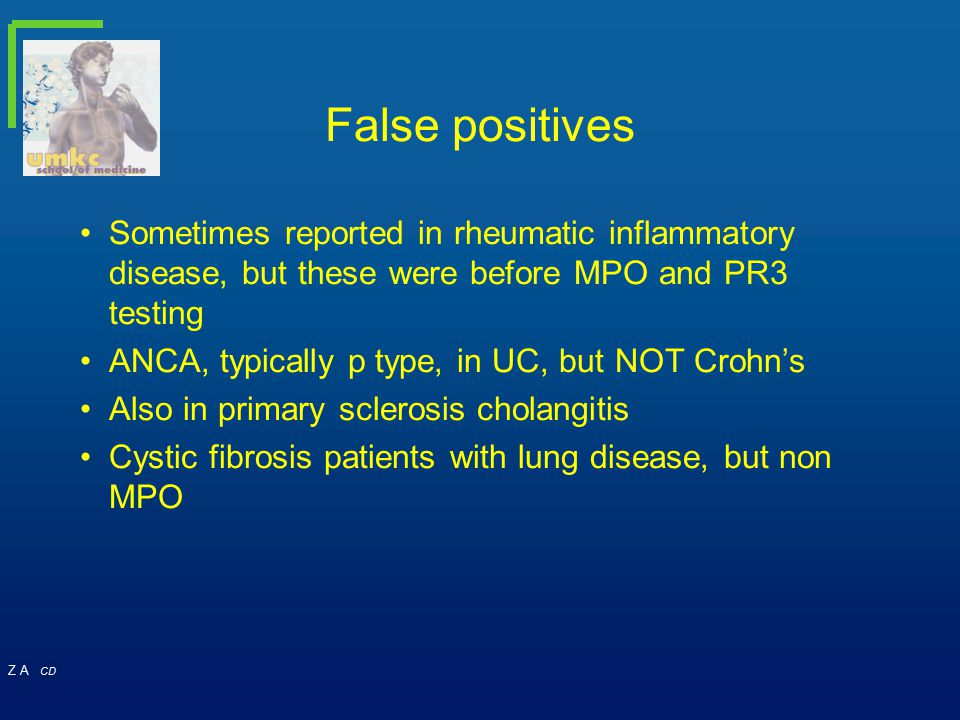 False positives Sometimes reported in rheumatic inflammatory disease, but these were before MPO and PR3 testing.