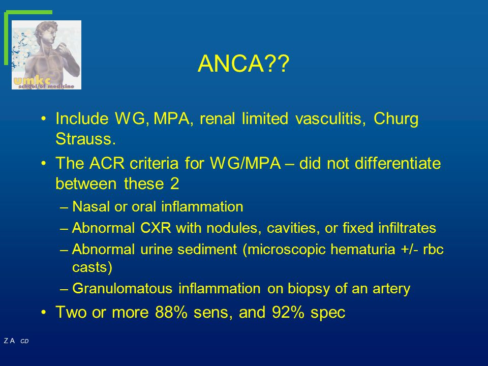 ANCA Include WG, MPA, renal limited vasculitis, Churg Strauss.