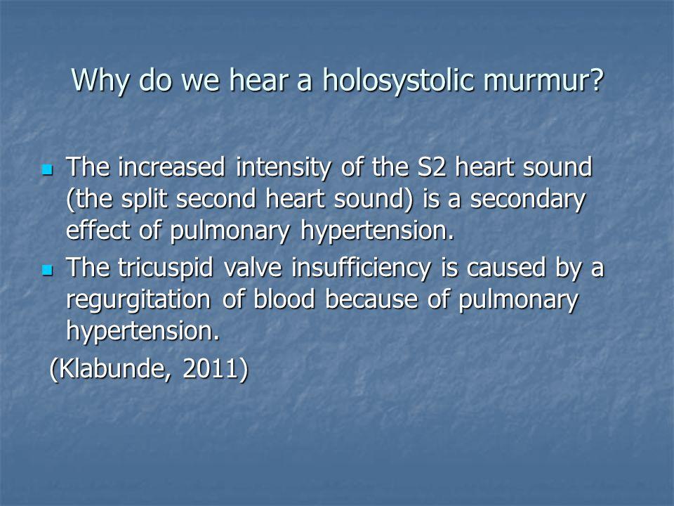 Why do we hear a holosystolic murmur