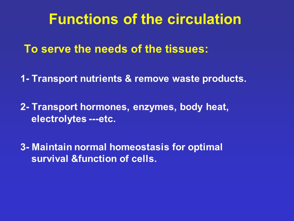 Functions of the circulation