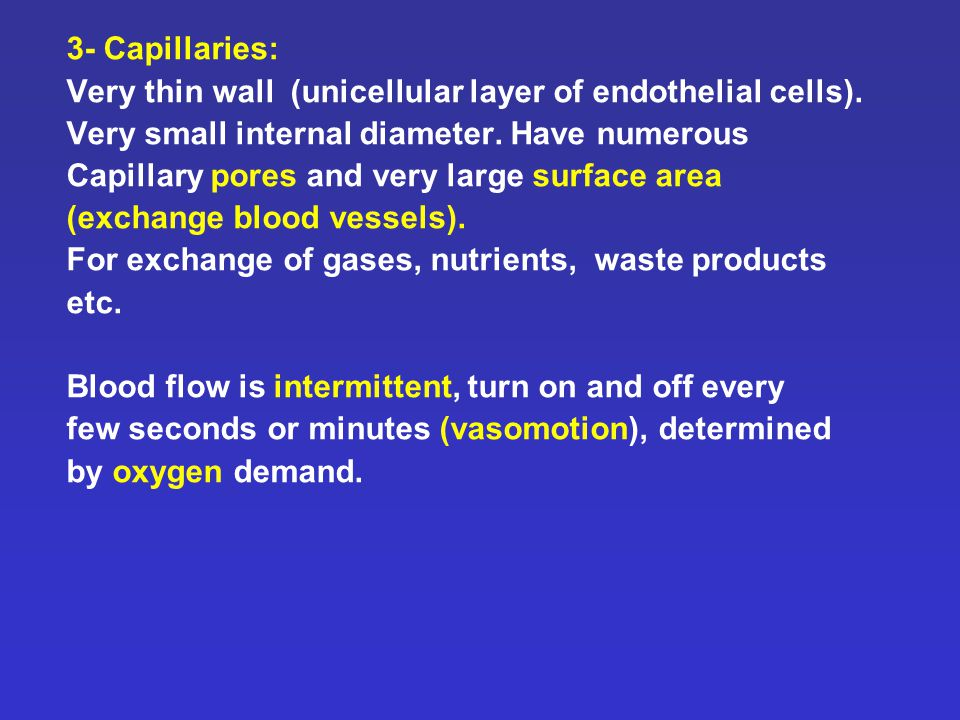 3- Capillaries: Very thin wall (unicellular layer of endothelial cells).