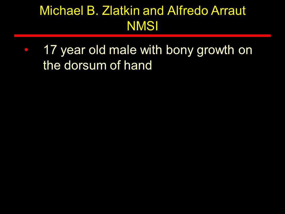 Michael B. Zlatkin and Alfredo Arraut NMSI