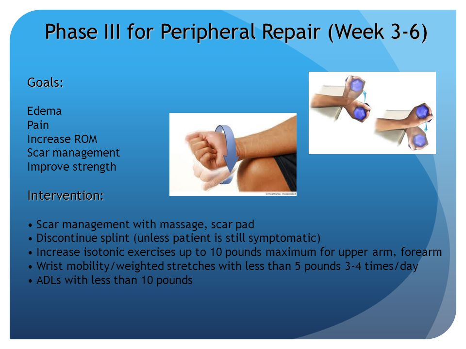 Phase III for Peripheral Repair (Week 3-6)