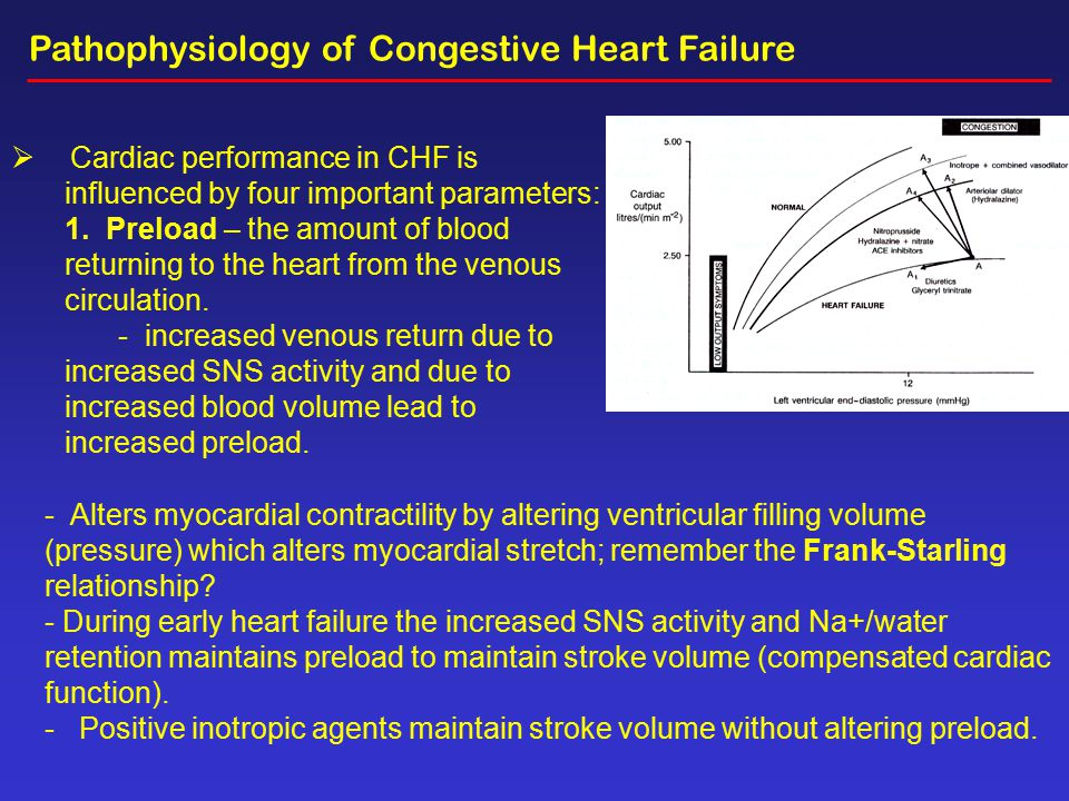 pathophysiology of chf Congestive heart failure (chf) complicates the course of a significant proportion of patients in the intensive care unit (icu) in the icu, chf may present as a manifestation of newly diagnosed cardiac disease or as an exacerbation of underlying heart disease, as a result of fluid overload or stress.