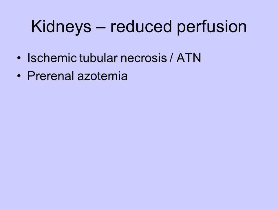 Kidneys – reduced perfusion