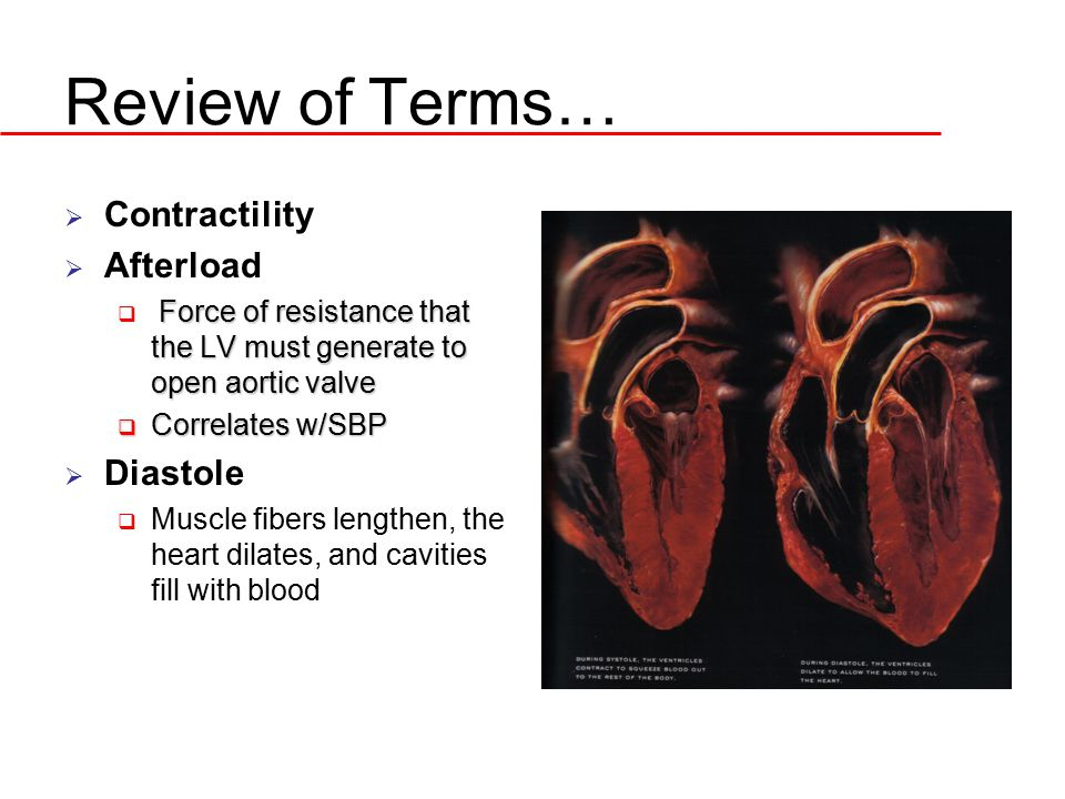 Review of Terms… Contractility Afterload Diastole