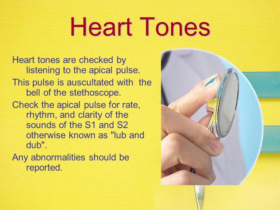 Heart Tones Heart tones are checked by listening to the apical pulse.