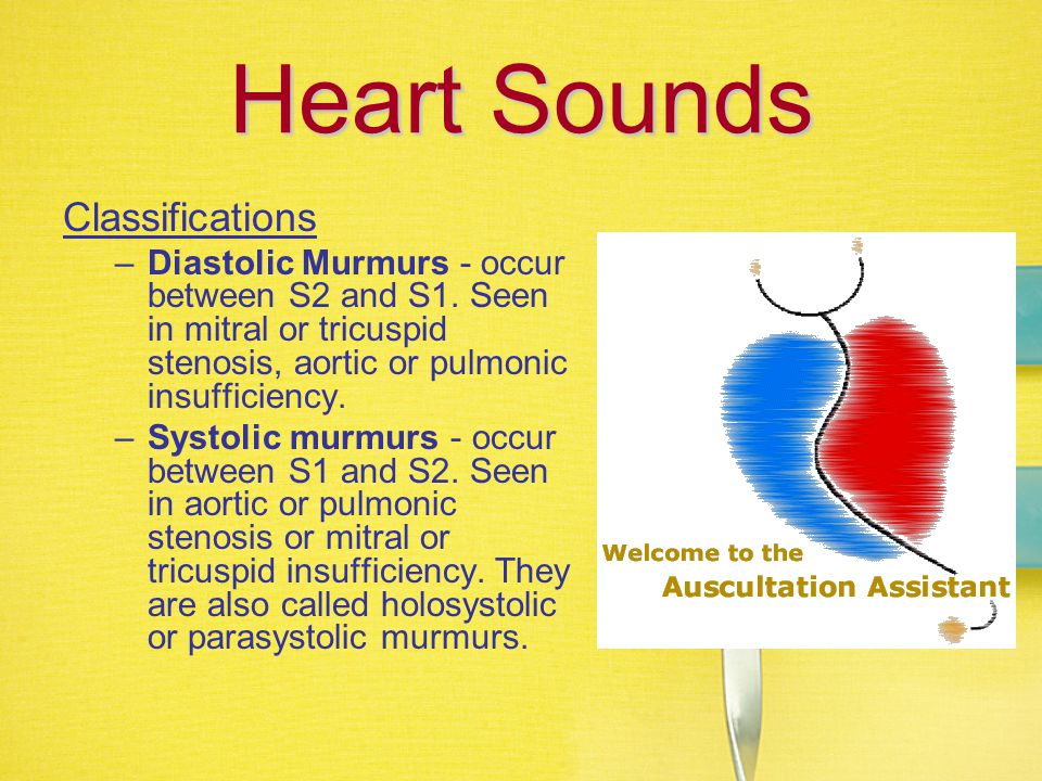 Heart Sounds Classifications