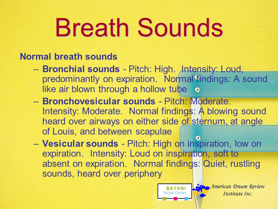Breath Sounds Normal breath sounds