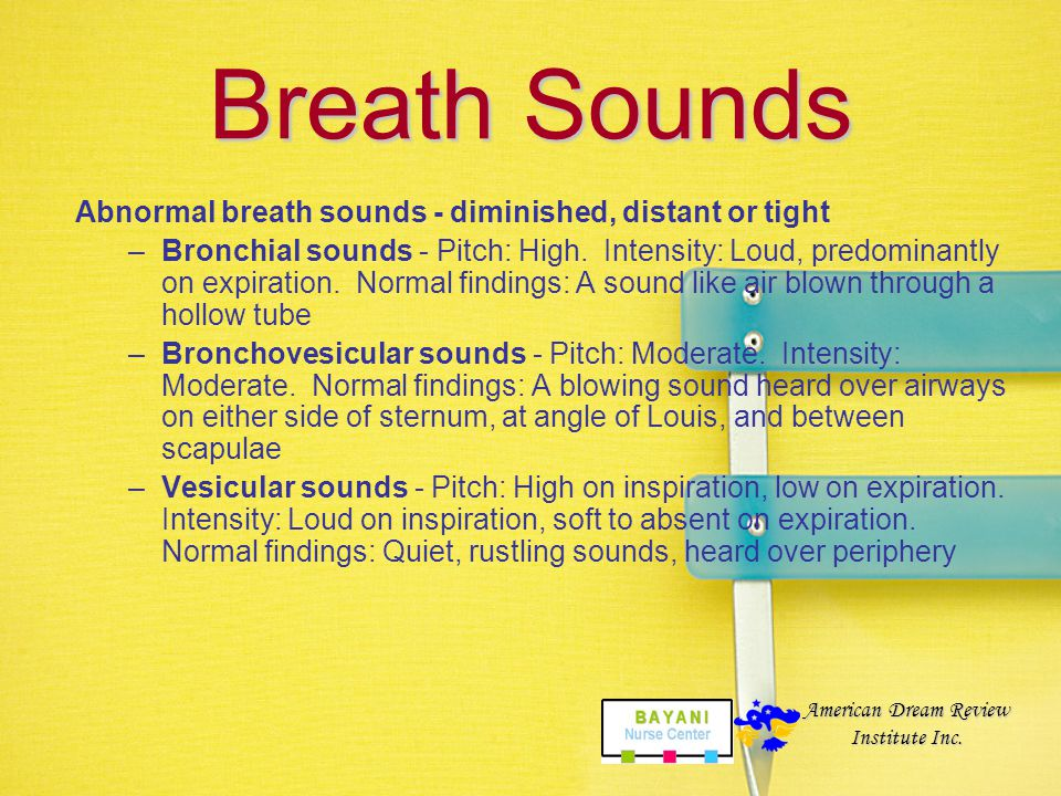 Breath Sounds Abnormal breath sounds - diminished, distant or tight