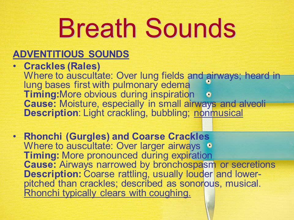 Breath Sounds ADVENTITIOUS SOUNDS