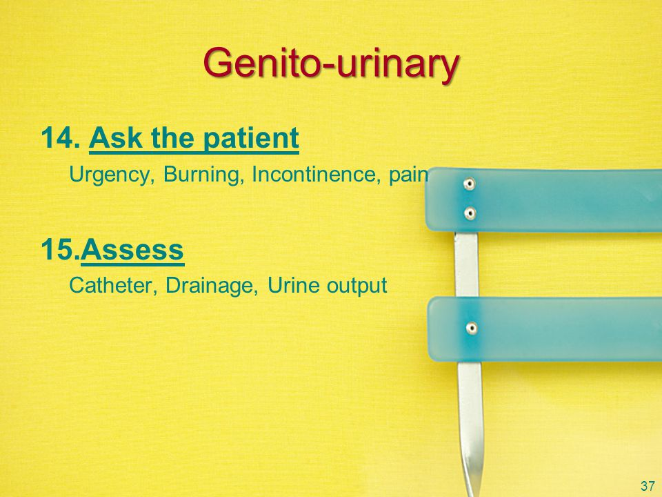 Genito-urinary Ask the patient Assess