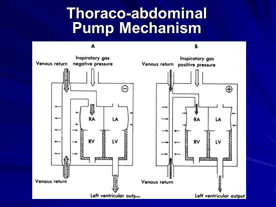 Thoraco-abdominal Pump Mechanism
