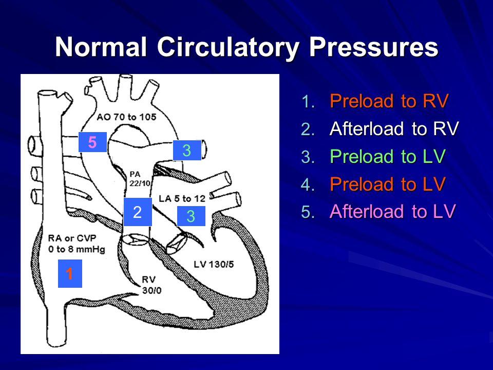 Normal Circulatory Pressures