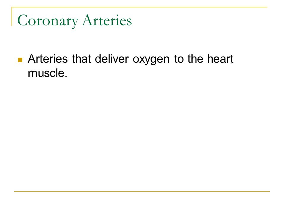 Coronary Arteries Arteries that deliver oxygen to the heart muscle.