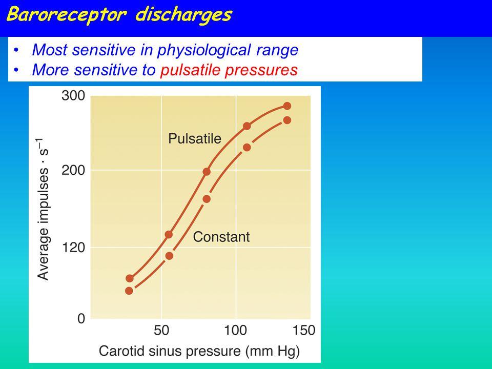 Baroreceptor discharges