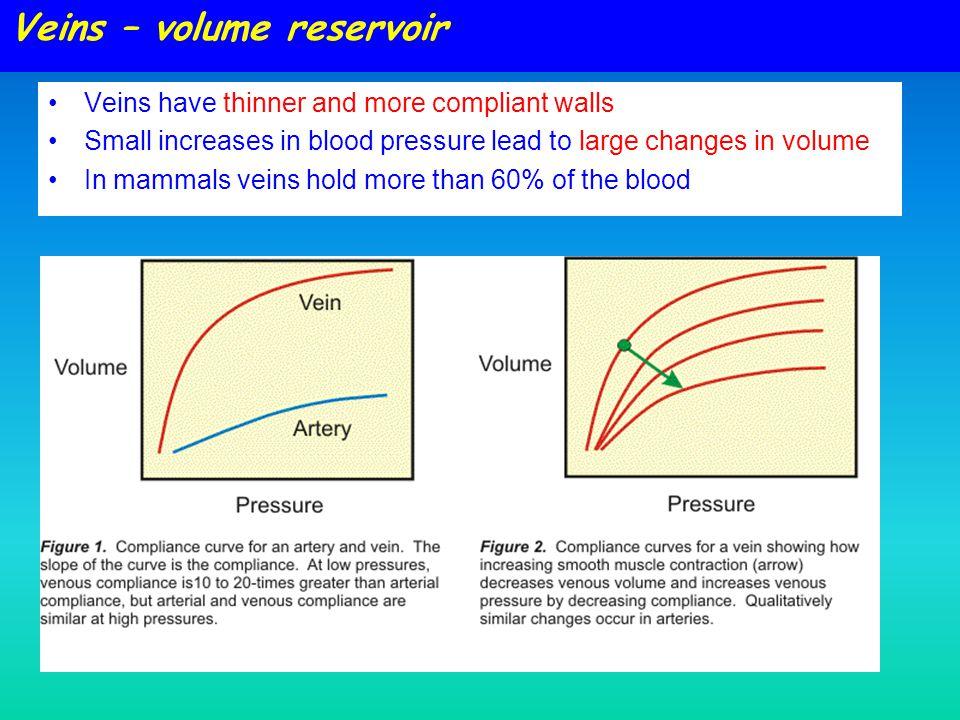 Veins – volume reservoir
