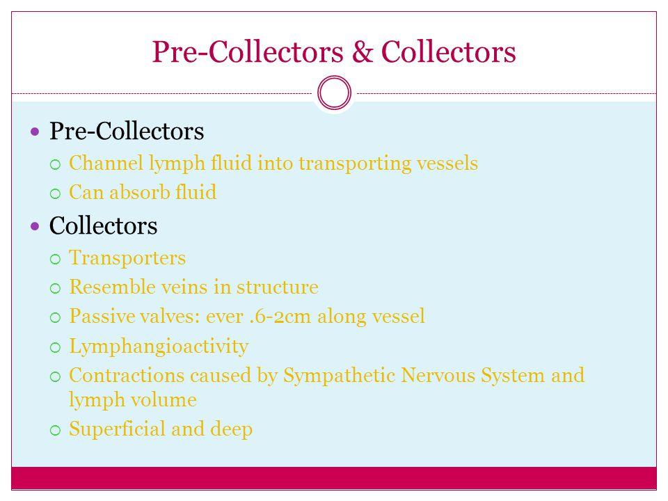 Pre-Collectors & Collectors