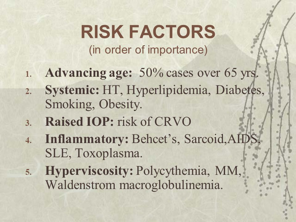 RISK FACTORS (in order of importance)