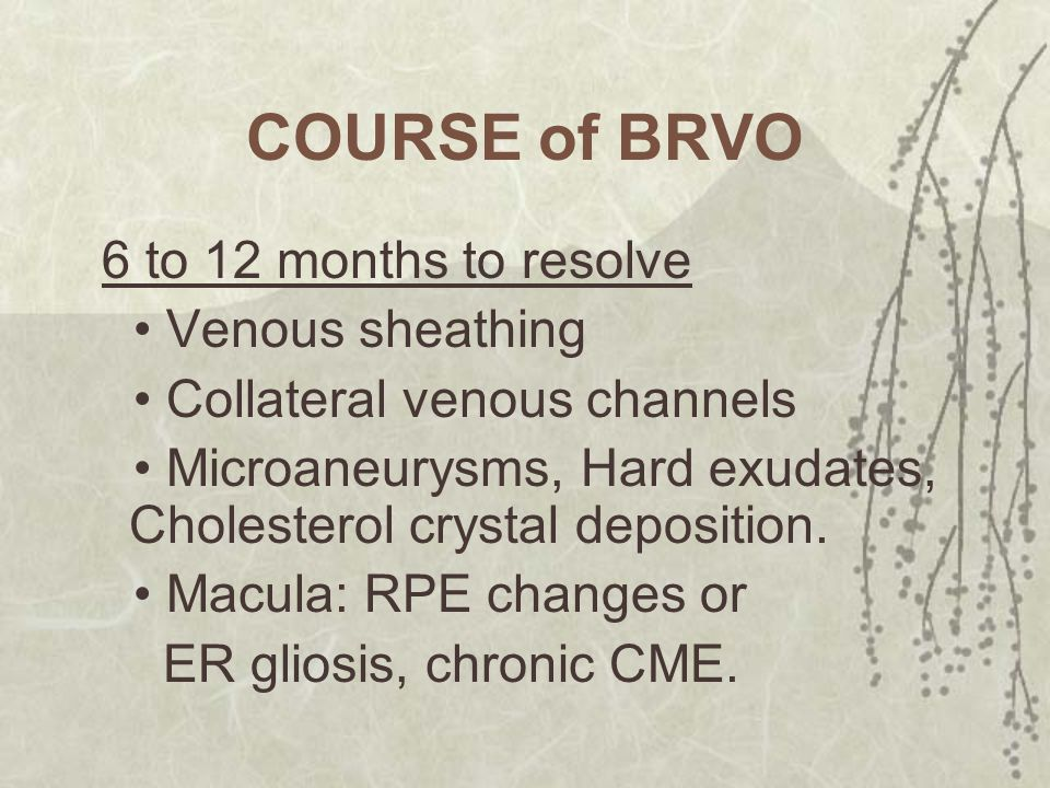 COURSE of BRVO • Venous sheathing • Collateral venous channels