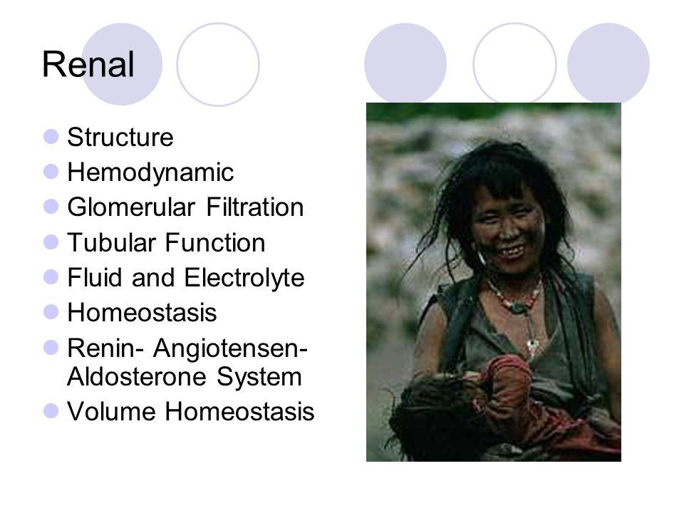 Renal Structure Hemodynamic Glomerular Filtration Tubular Function