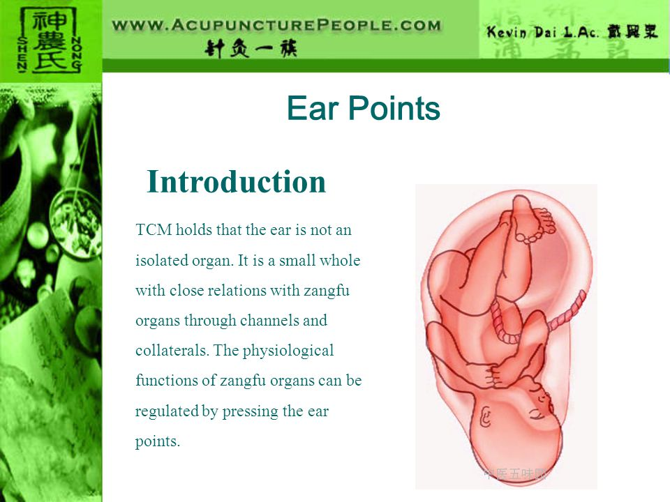Ear Points Introduction