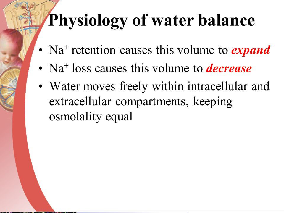 Physiology of water balance
