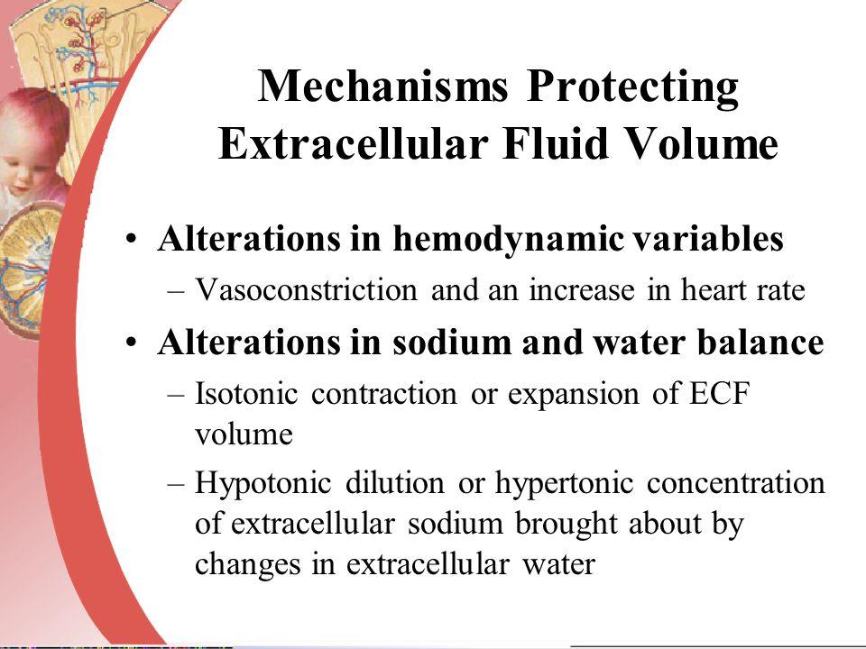 Mechanisms Protecting Extracellular Fluid Volume