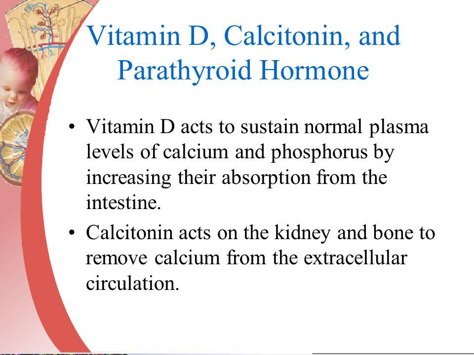 Vitamin D, Calcitonin, and Parathyroid Hormone