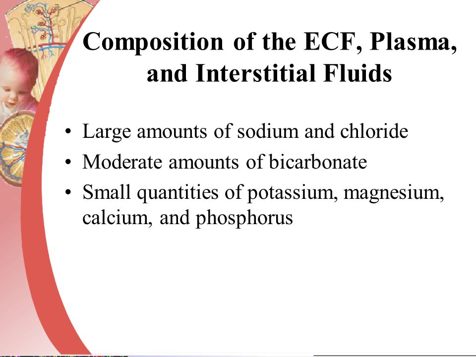 Composition of the ECF, Plasma, and Interstitial Fluids