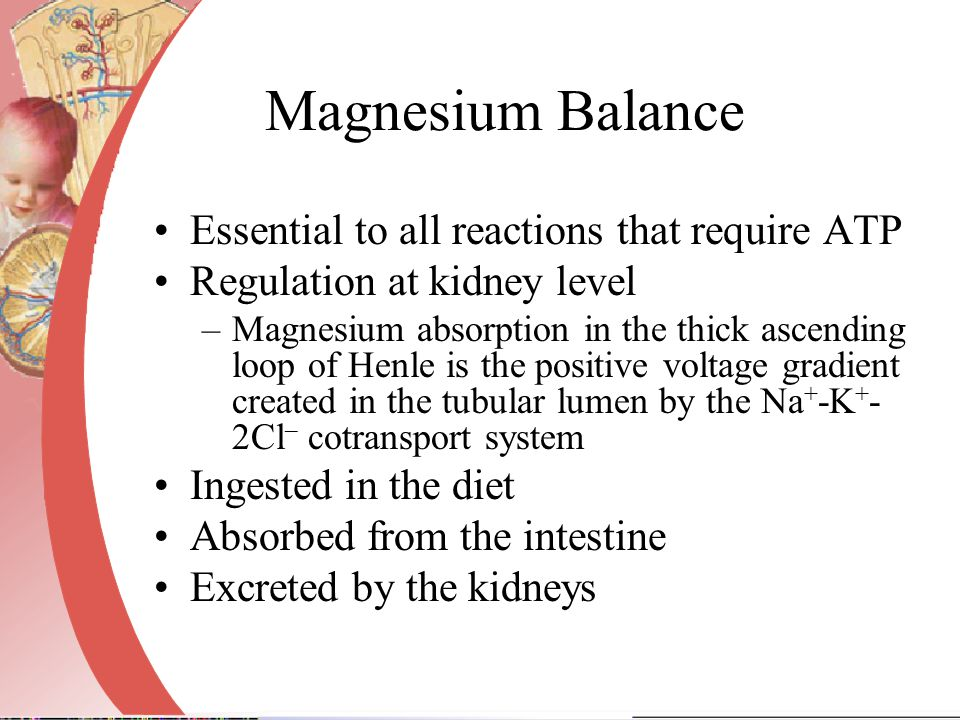Magnesium Balance Essential to all reactions that require ATP